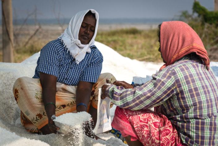 dry salt packing India