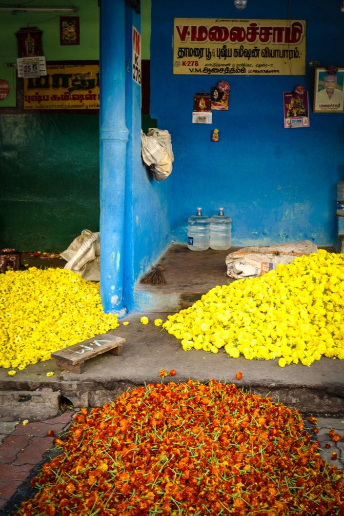 madurai flower market jasmine