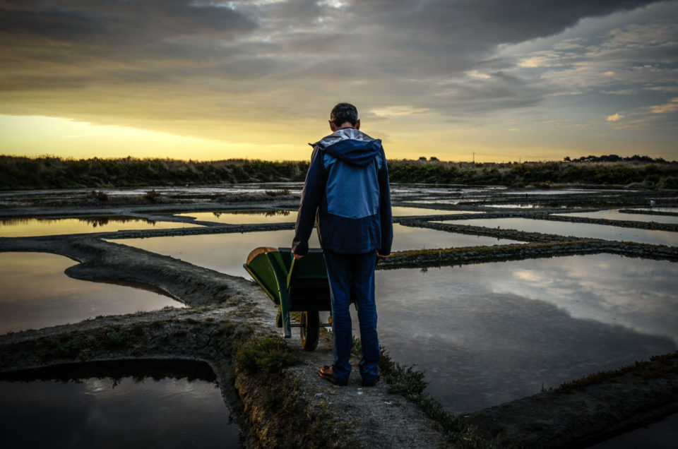 Balade matinale dans les marais salants de Guérande.